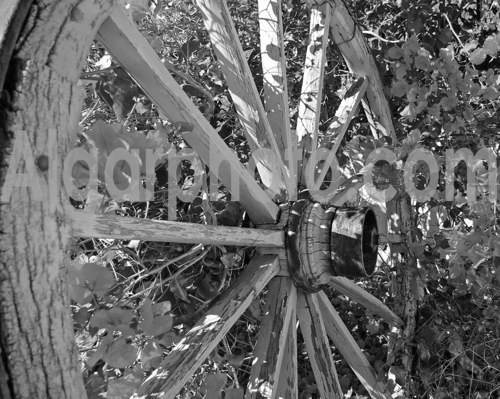 Algarve photography Old Cart Wheel