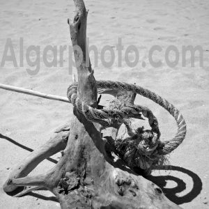 Algarve photography mono images by algarphoto