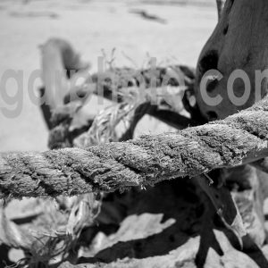 Praia da Amoreira Algarve photography mono images by algarphoto