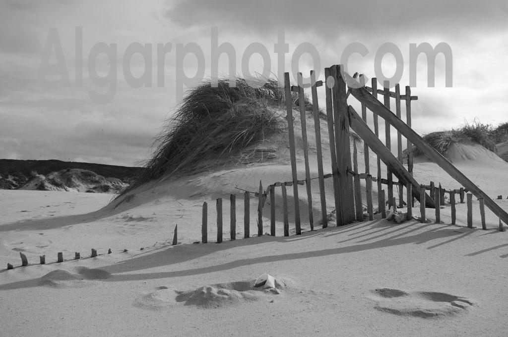 Algarve photography Amoreira Dunes
