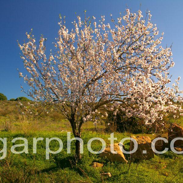 Algarve photography landscape colour
